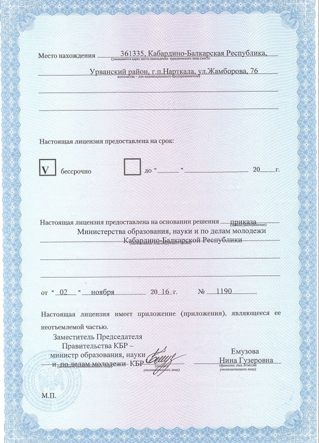 копия лицензии, лист2