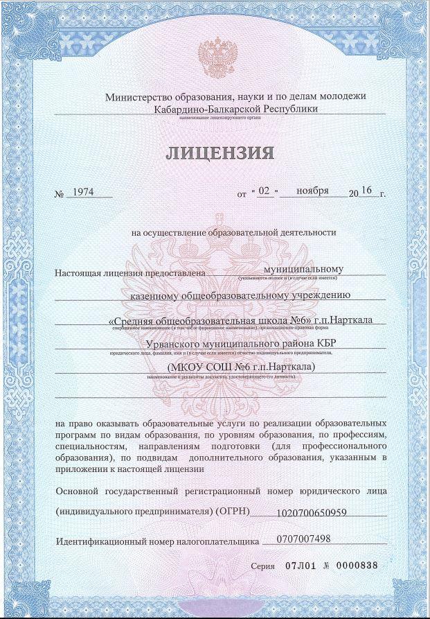 копия лицензии, лист1